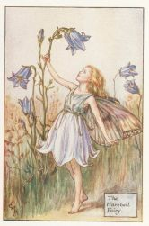 Cicely Mary Barker's Harebell Fairy